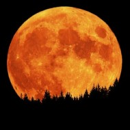 Does the Full Moon Effect your Dreams?