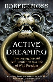 Bearing down on Active Dreaming by Robert Moss: A Review | dream ...