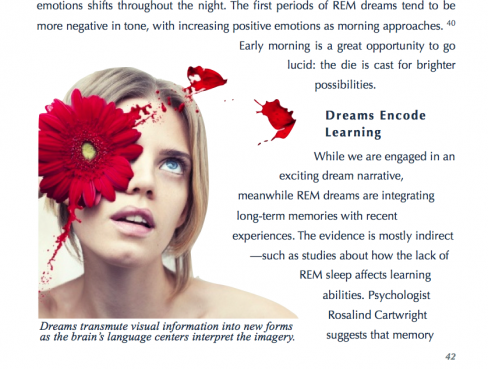 Lucid Immersion: Advanced Lucid Dreaming Training